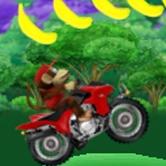 Play Donkey Kong ATV