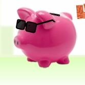 Rich Piggy 2 Levels Pack
