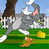 Tom And Jerry Mouse About The House